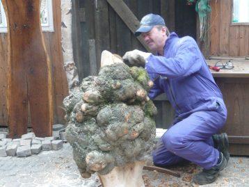 """Skulptur – """"AUSWÜCHSE"""" (verkauft)"""