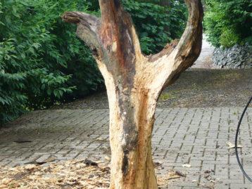 """Skulptur – """"ADLER"""" (verkauft)"""